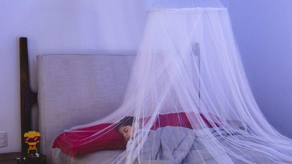 Consejos para combatir a los mosquitos